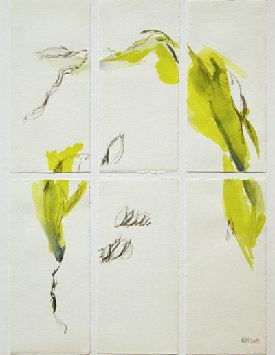 Kleine Formen des Wachsens II - Mischtechnik auf Papier © Hilde Chistè