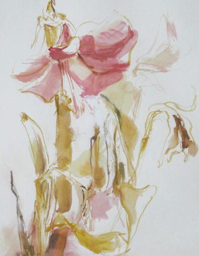 12 Welkende Amaryllis-Mischtechnik auf Papier © Hilde Chistè